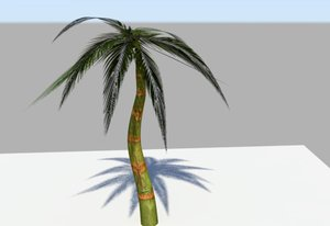 free palm trees 3d model