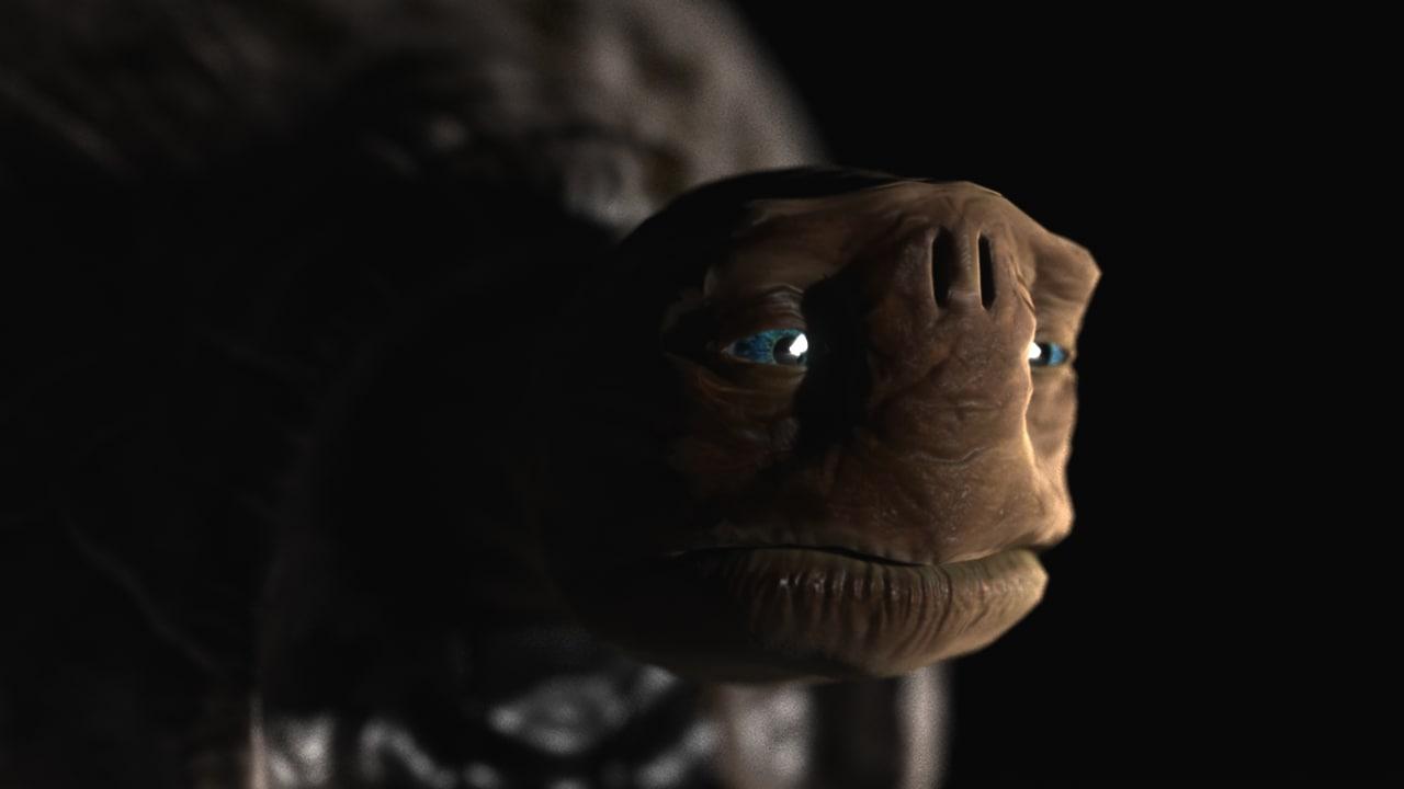 max morla turtle