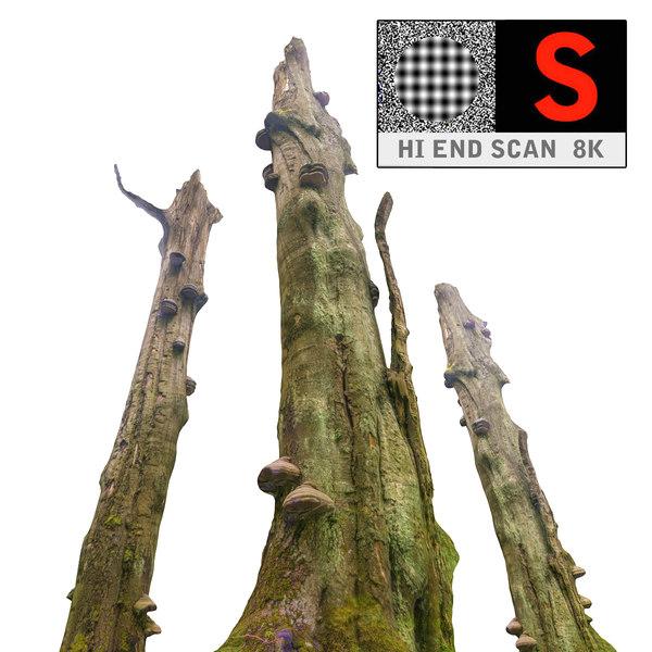 old forest obj