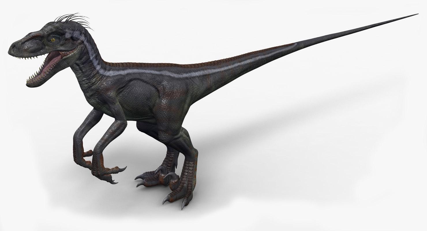 velociraptor 1 3d model