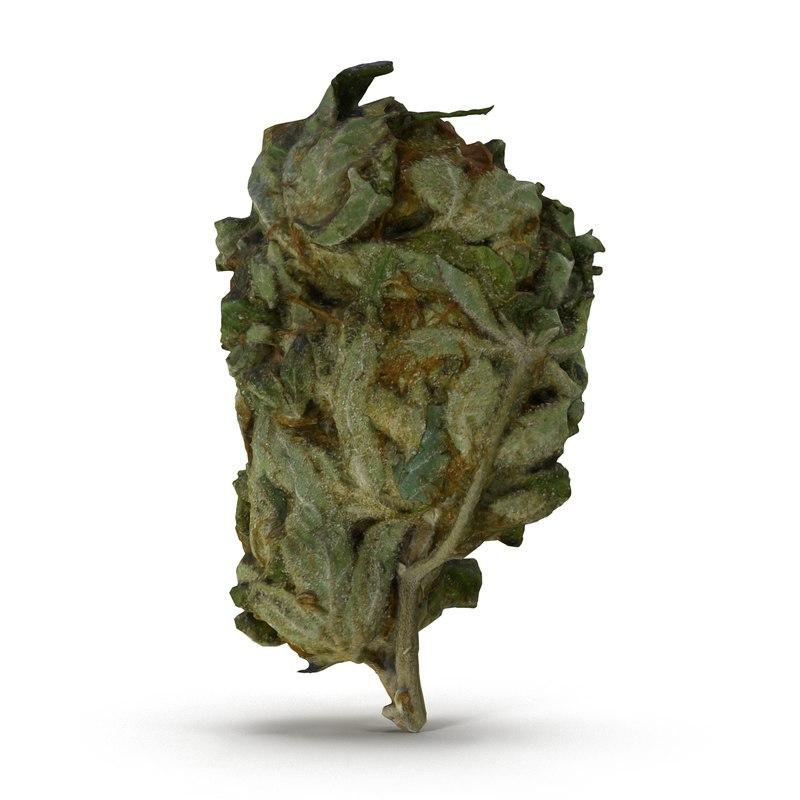 3ds max cannabis bud