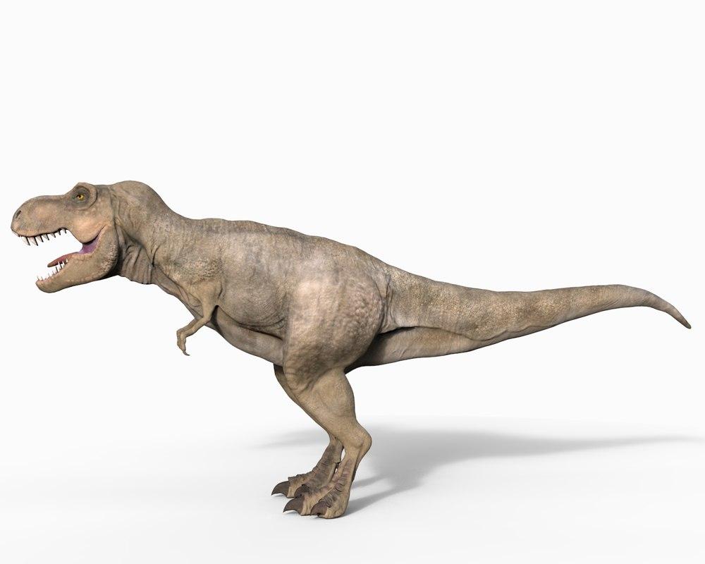 3d rex tyrannosaurus animation model