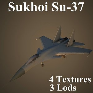 max sukhoi fighter