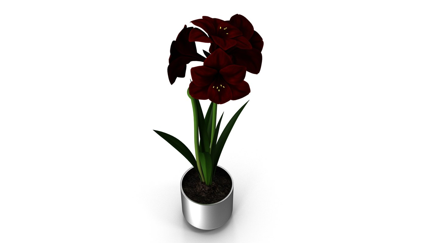 3d model red flower metal pot