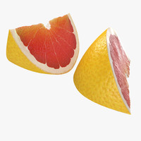 3d grapefruit slice 3 modeled