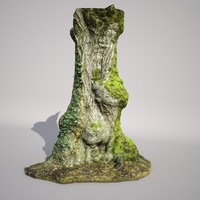 DBuzzi 3D Scan France Willow
