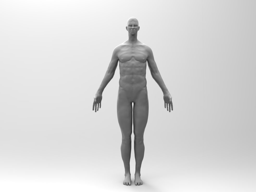maya human male normal displacement