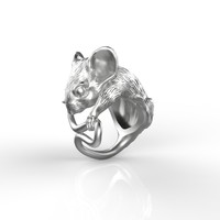 ring mousy 3ds