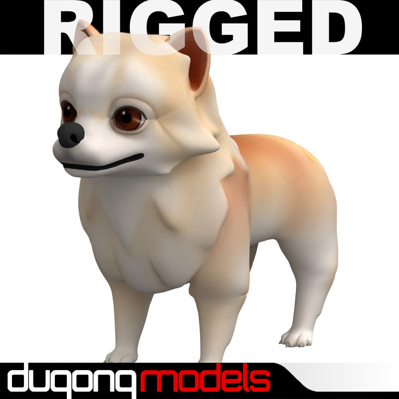 3d dugm06 rigged cartoon dog model