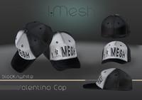 mesh cap 3d model