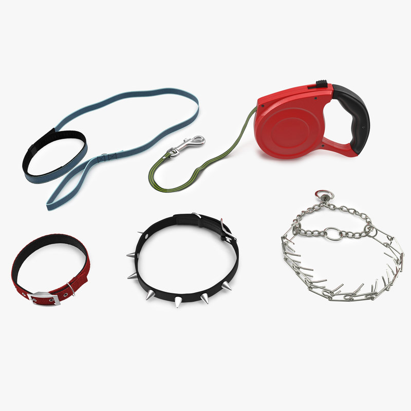 dog collar leashes 3d 3ds