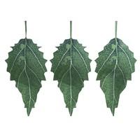 leaf 3d obj