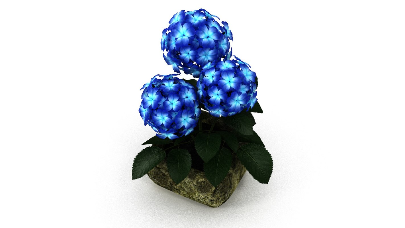 3d model blue flower stone pot