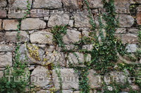 Wall_Texture_0071