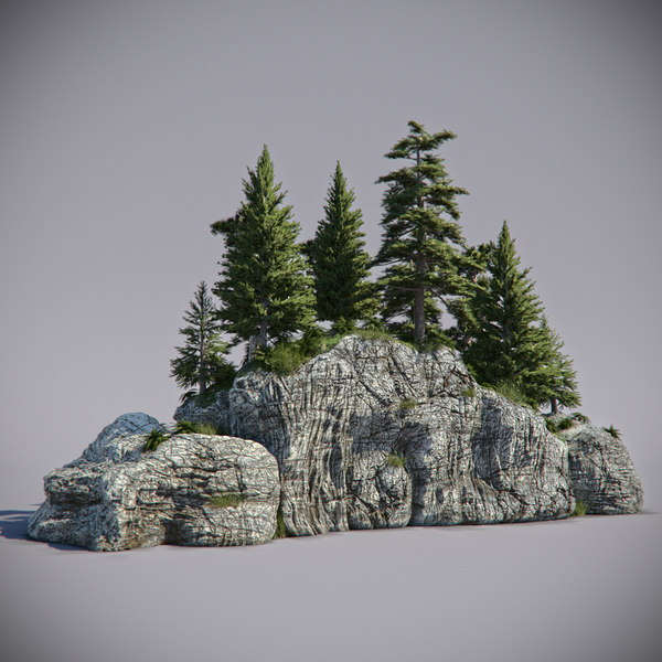 max forest rock
