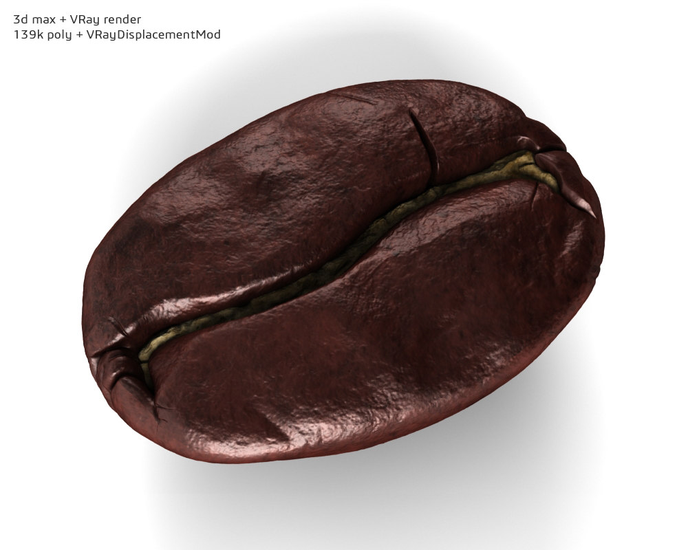 3d model coffee bean