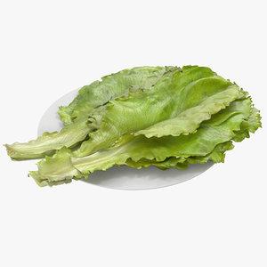 3d model lettuce leaf pile modeled