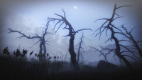 10 Old Spooky Tree Models For AAA And Mobile Games