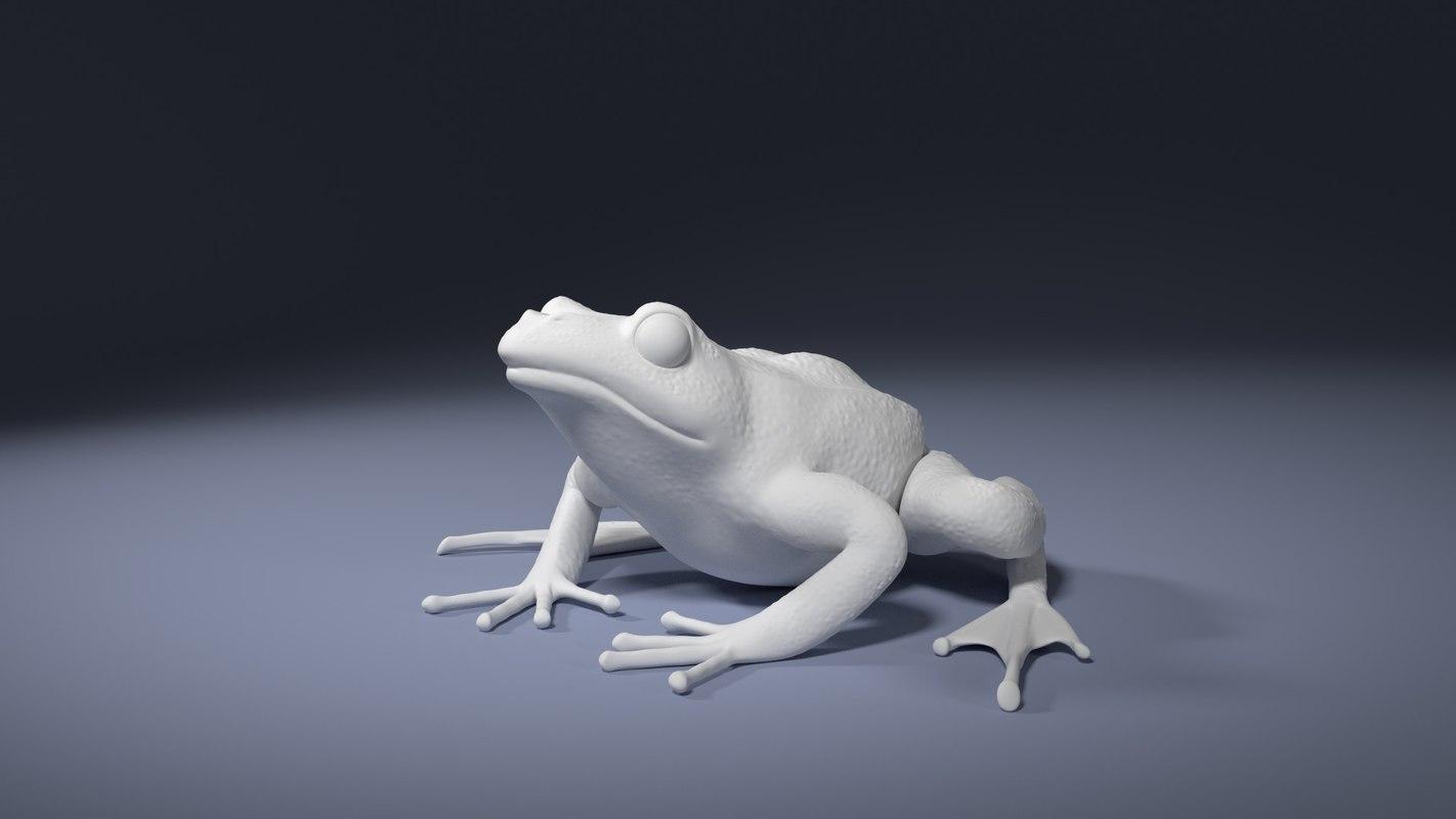 3d model rana temporaria frog