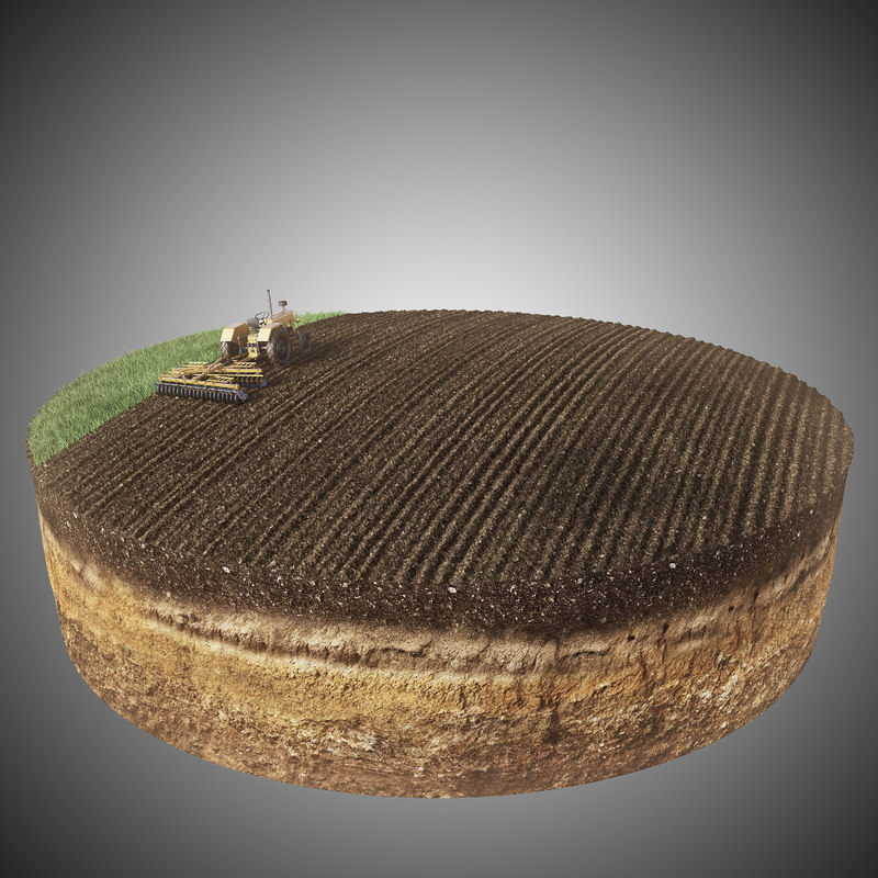 3d model diorama crop field