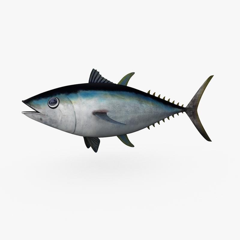 cinema4d bigeye tuna