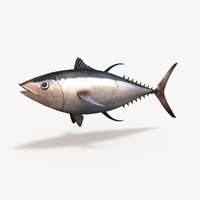 c4d tuna bluefin