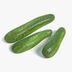 3d model cucumbers