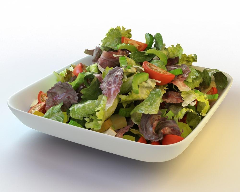 3d model 32 salad