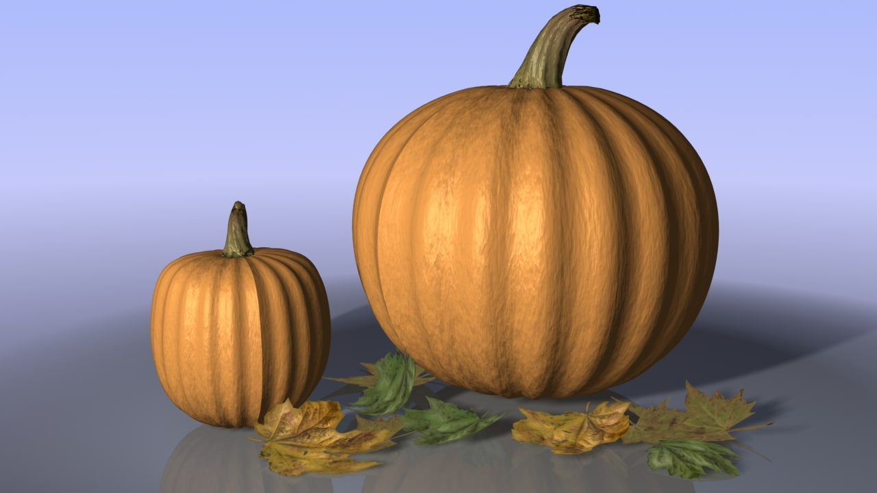 pumpkins leaves 3d max
