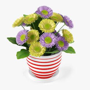 flower gerbera 3d model