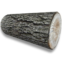 Low Poly Log