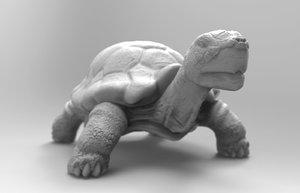 turtle print ready 3d model