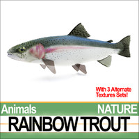 3ds max rainbow trout