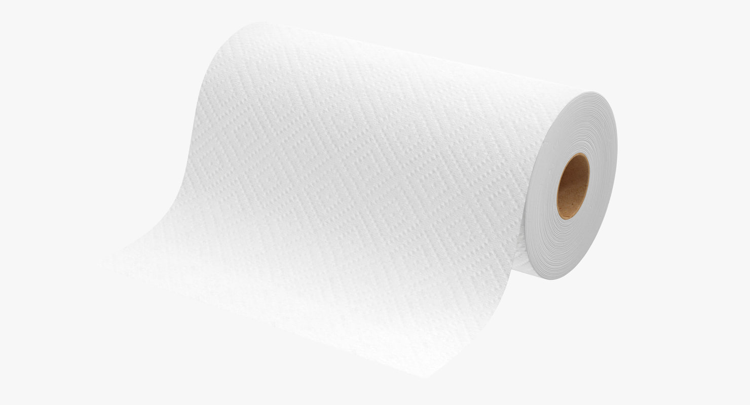 3d paper towel roll