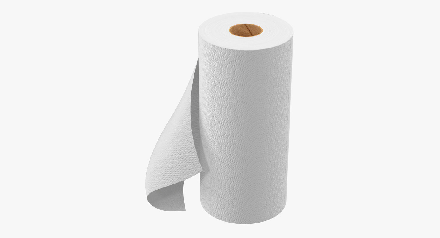 paper towel roll 3d max