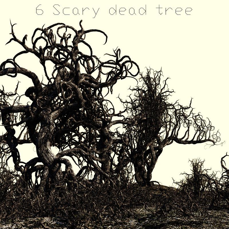 3d model of 6 tree trunk