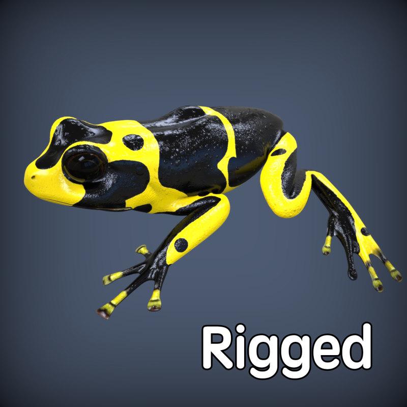 maya realistic poison frog rigged