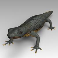 salamander 3d max