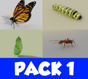 3d model insect pack 1