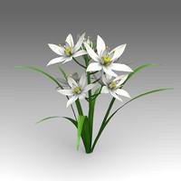 fbx flower