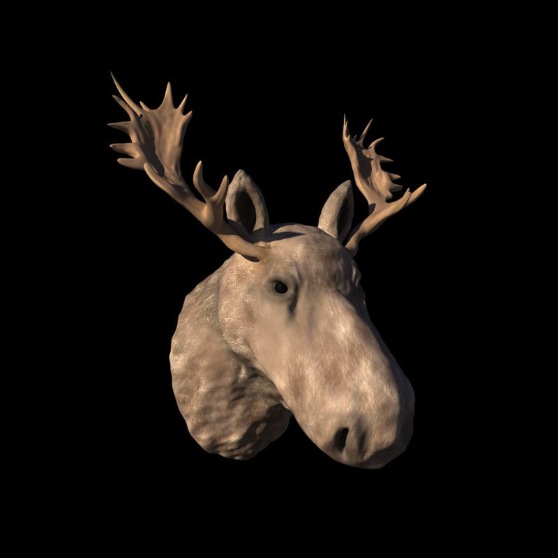 3ds max moose head