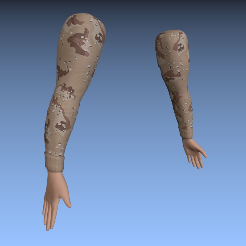 3d model fps arms rigged