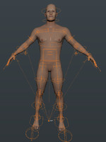 blender basic human male