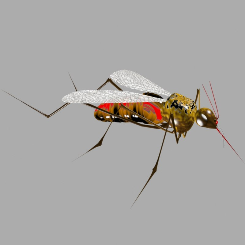 max mosquito