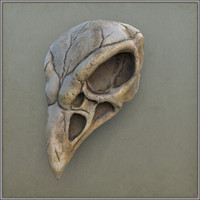 crow bird Scull
