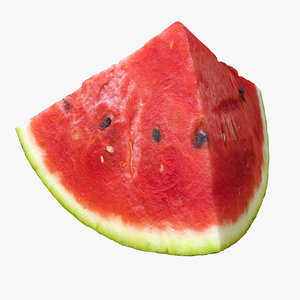 melon hotel 3d model