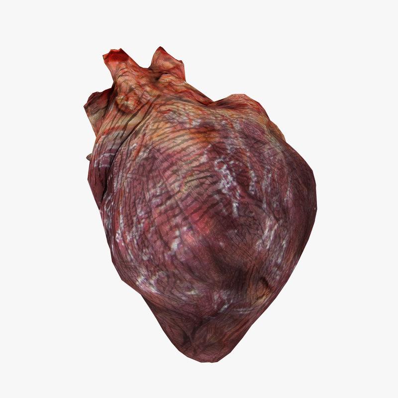 free heart 3d model