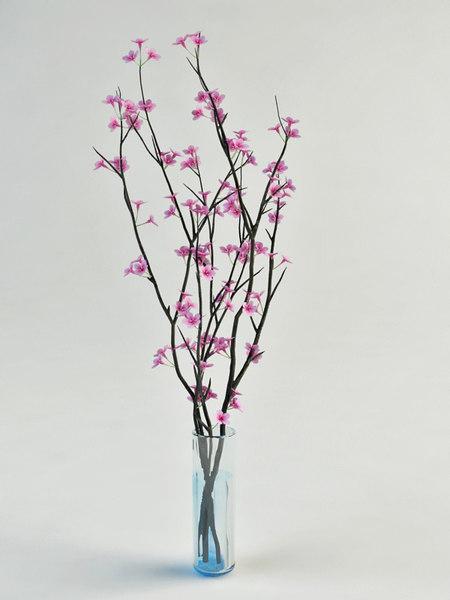 max flowering sacura glass vase