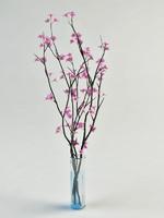 sacura branch in vase