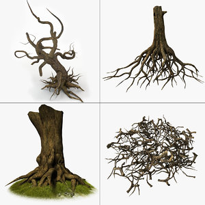 3d roots tree model
